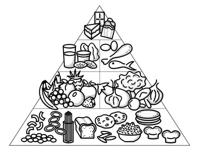 Food Pyramid Coloring and Activity Pages