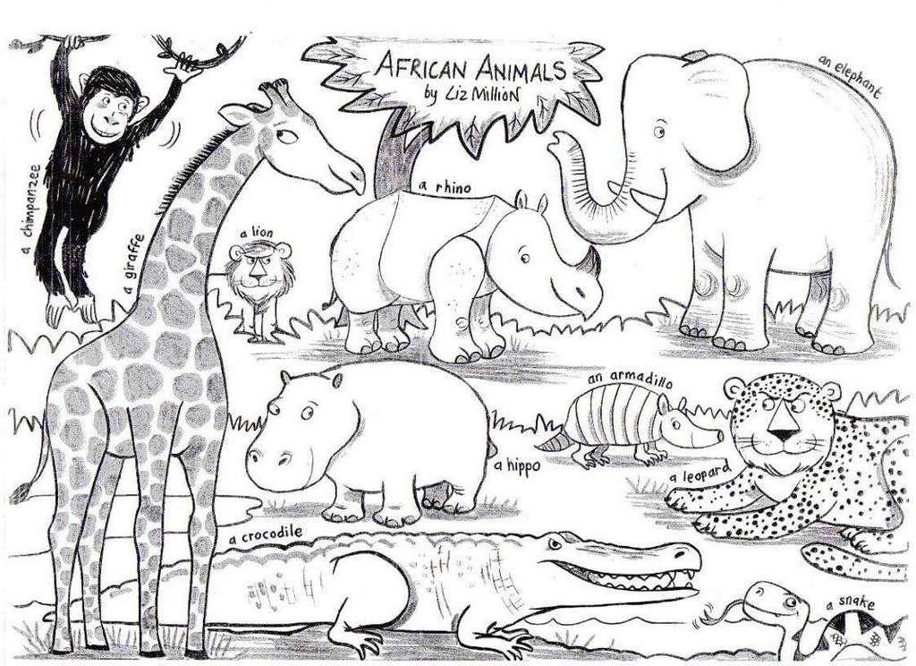 african animal species coloring sheet