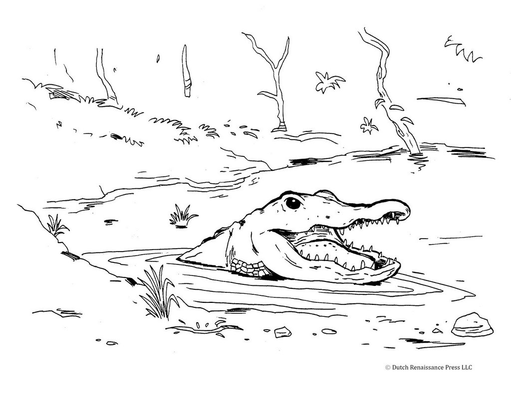 crocodile in the water coloring page