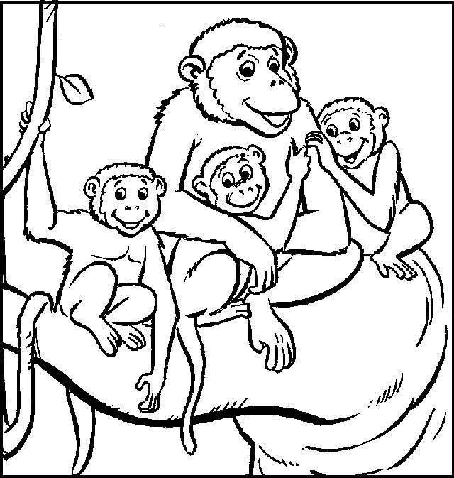 monkey family coloring picture