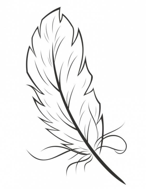 eagle bird feather coloring sheet