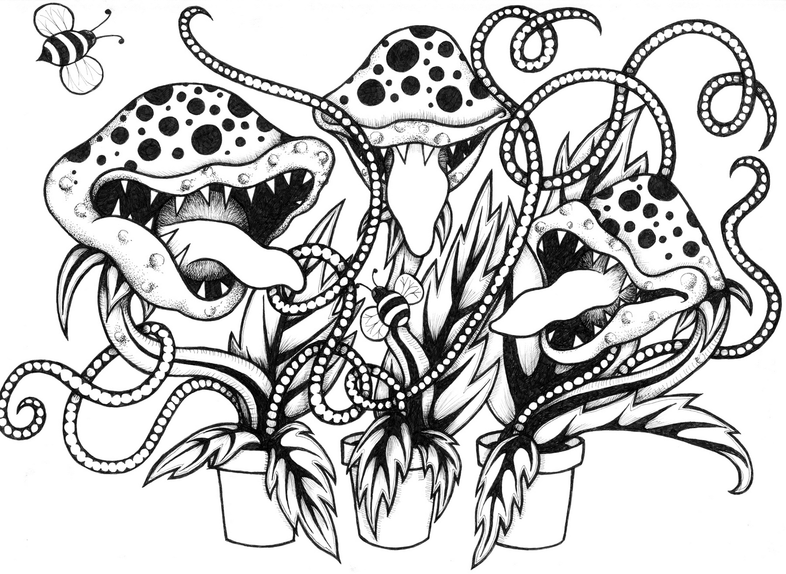 venus fly trap carnivorous plant coloring sheet