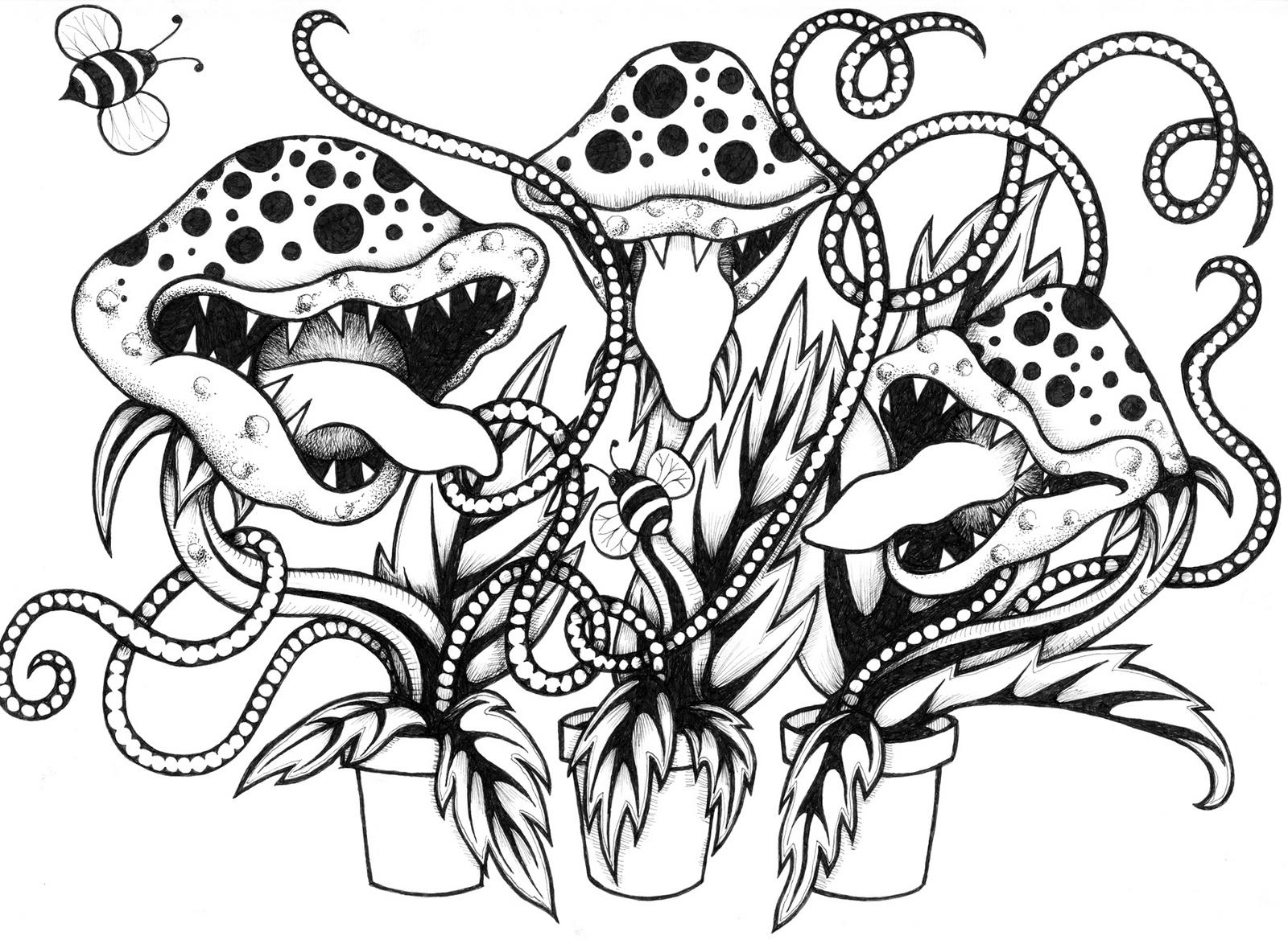 venus fly trap carnivorous plant coloring sheet