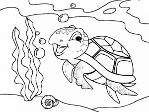 Cute Sea Turtle Cartoon Coloring Work for Child