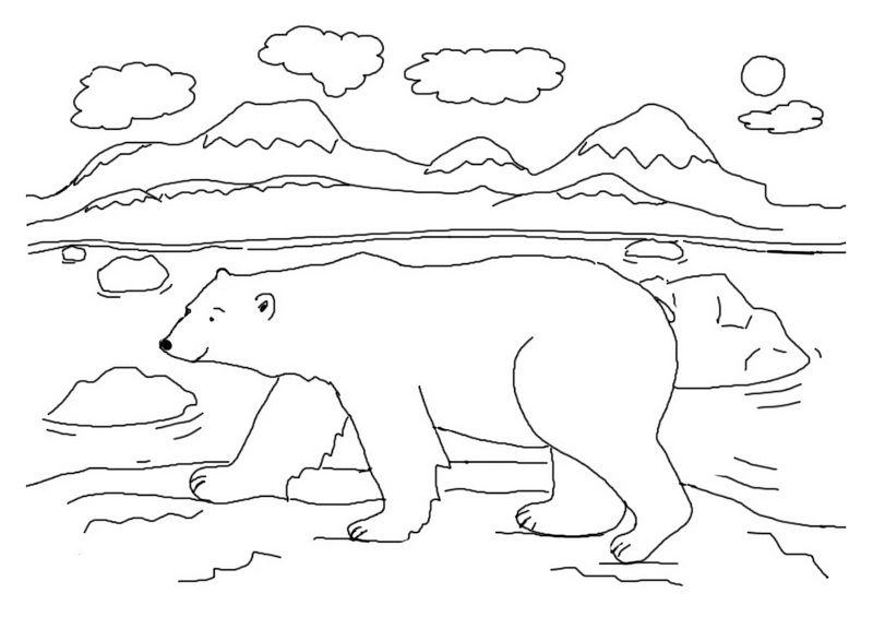 best polar bear in the Arctic coloring page