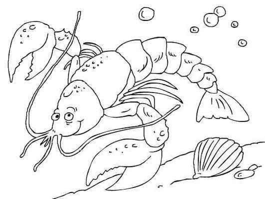 perfect lobster shellfish coloring page