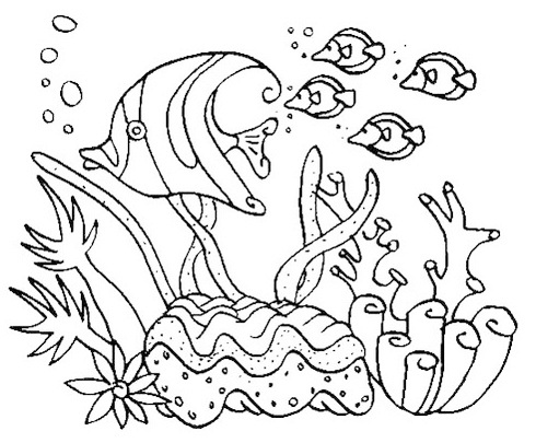 simple coral reefs coloring picture
