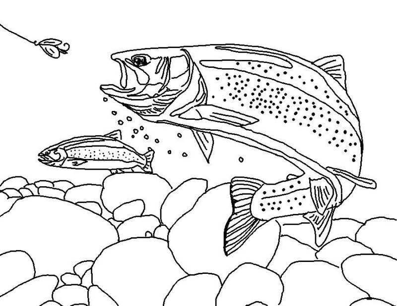 best trout fish coloring page