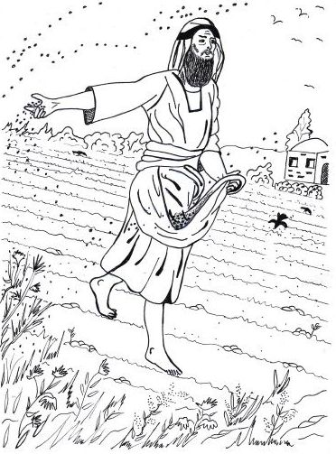 Parable Sower Seed Activity Coloring Page