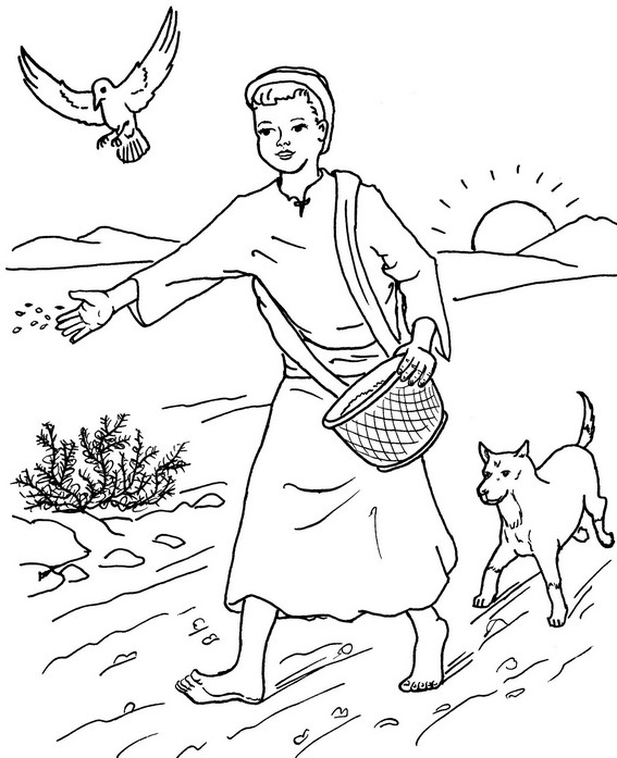 best parable of the sower coloring page