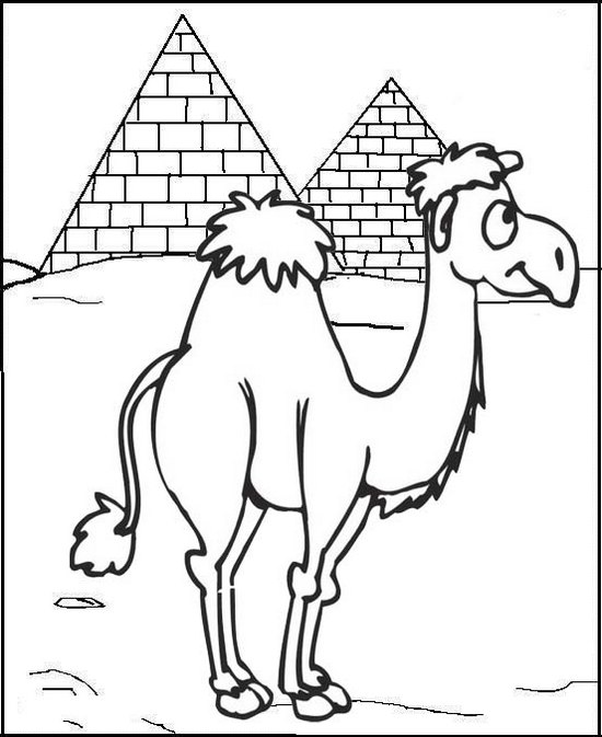 fun camel coloring page for kids