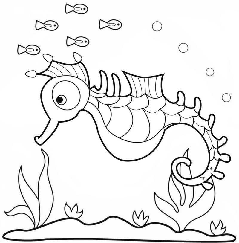 Baby Long Snouted Seahorse Coloring Pages