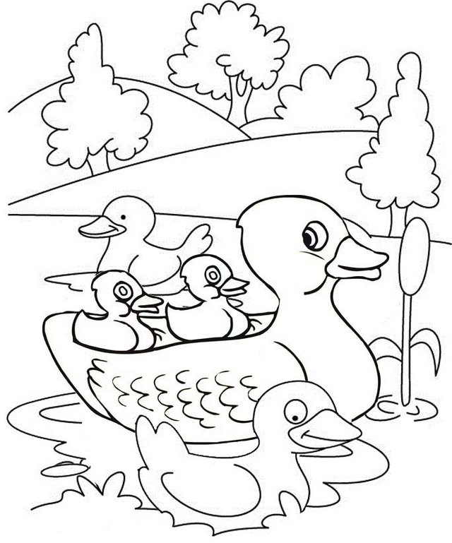 Cute Duck and Ducklings on the Lake Coloring Page