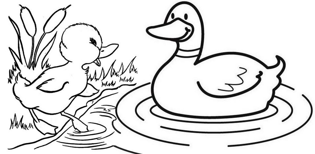 Duck and Baby Coloring Page for Kids