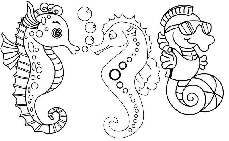 Three Fun and Cute Baby Seahorses Coloring Page