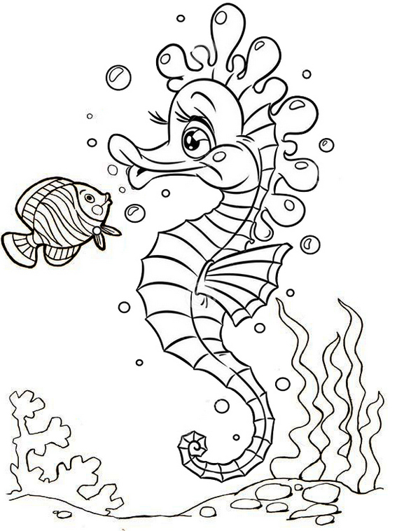beautiful baby seahorse coloring page