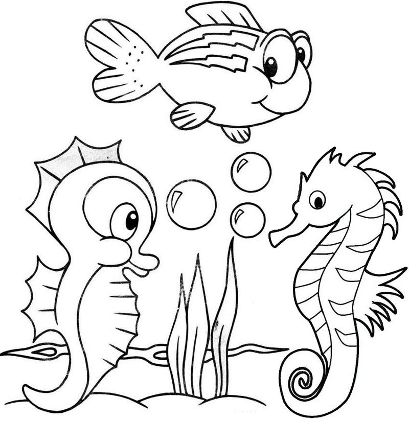 cute baby seahorse coloring page