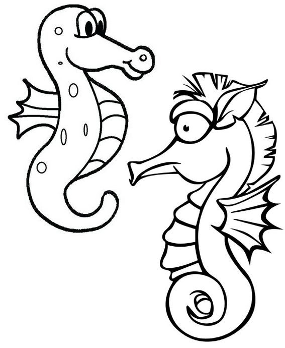 fun printable baby seahorses coloring pages