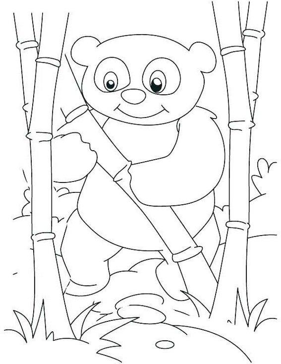 baby panda playing bamboo coloring page