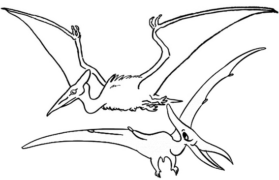 Fun Pterosaur coloring page