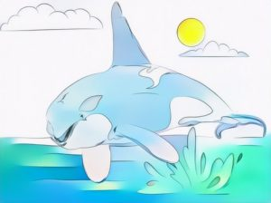 Killer Whale Coloring Work from Kezia