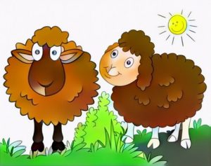 Sheep Coloring Work from Vincent