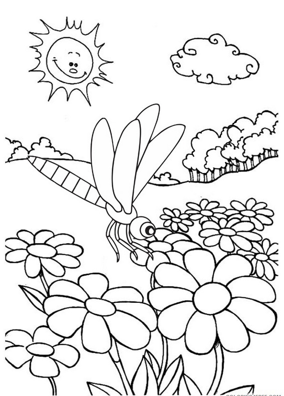 dragonfly with flowers coloring page