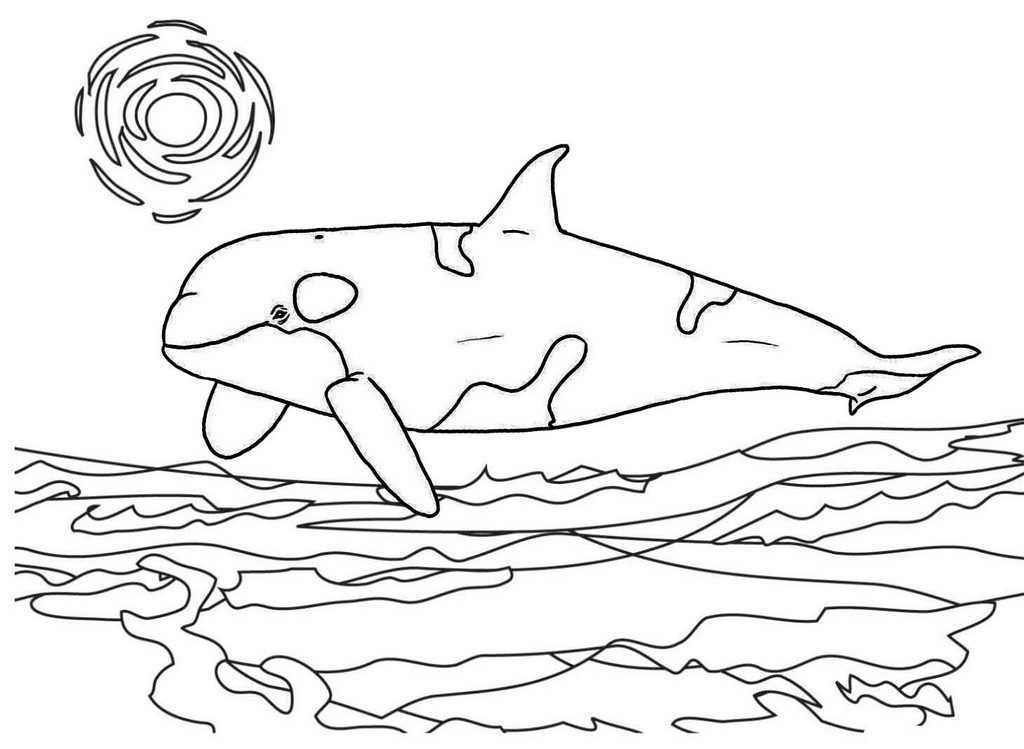 killer whale sea coloring page