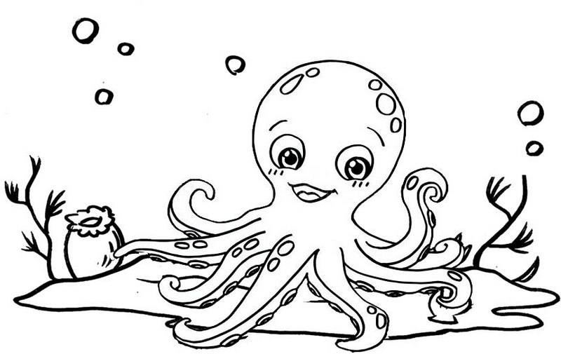 Beautiful Octopus Coloring Page