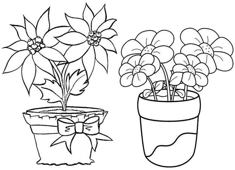 Best Flower Pot Coloring Page
