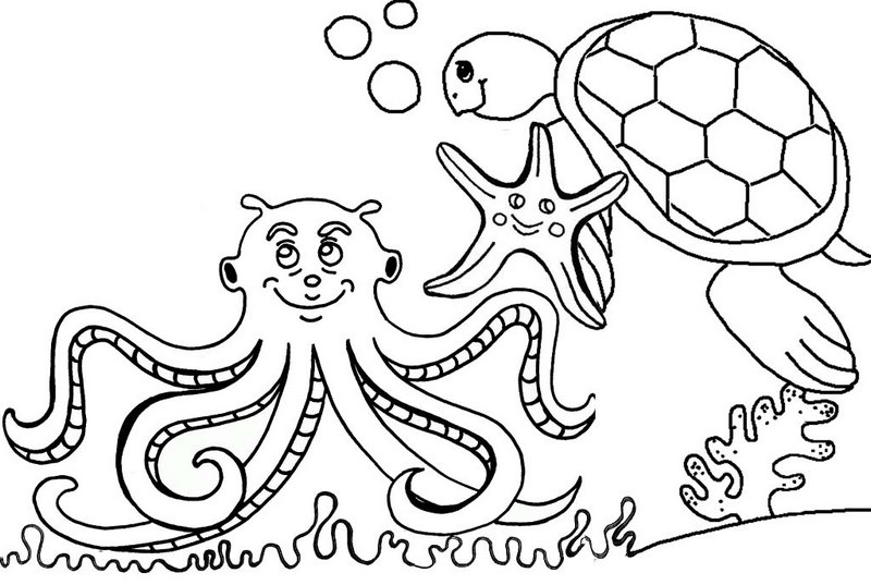 Best Octopus Undersea Coloring Page with Starfish and Sea Turtle