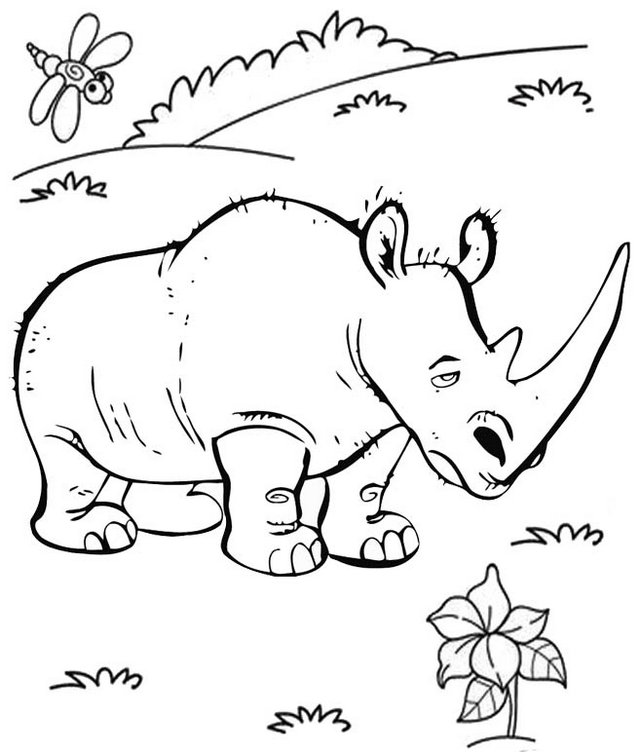 Best White Rhino Animal Coloring Pages for Kids