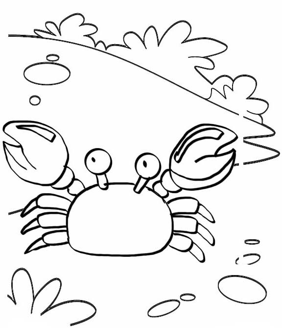 Cute crab coloring page for kids