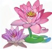 Five Delightful Lotus Coloring Pages for All Ages