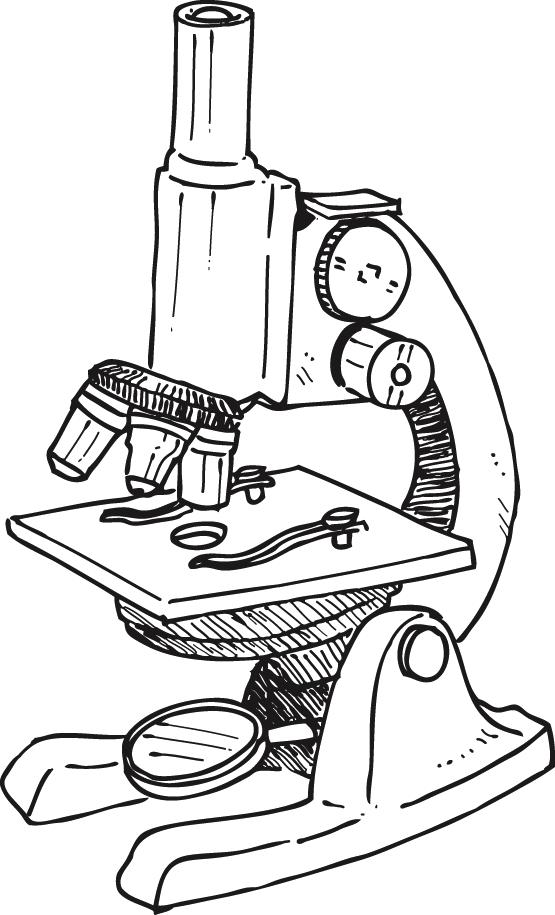 Microscope Laboratory Drawing
