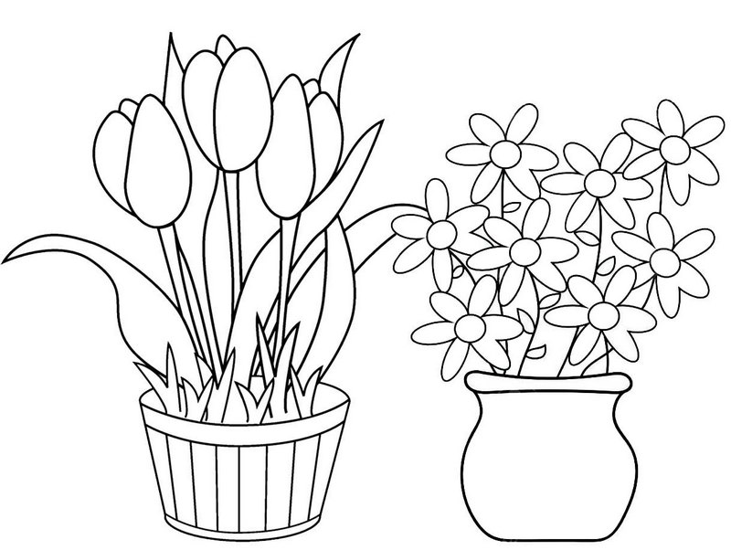 Wonderful Flower Pot Coloring Page for Girls