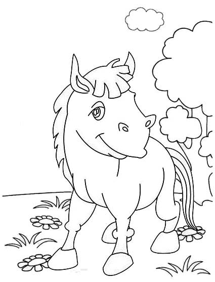 beautiful donkey coloring page for children