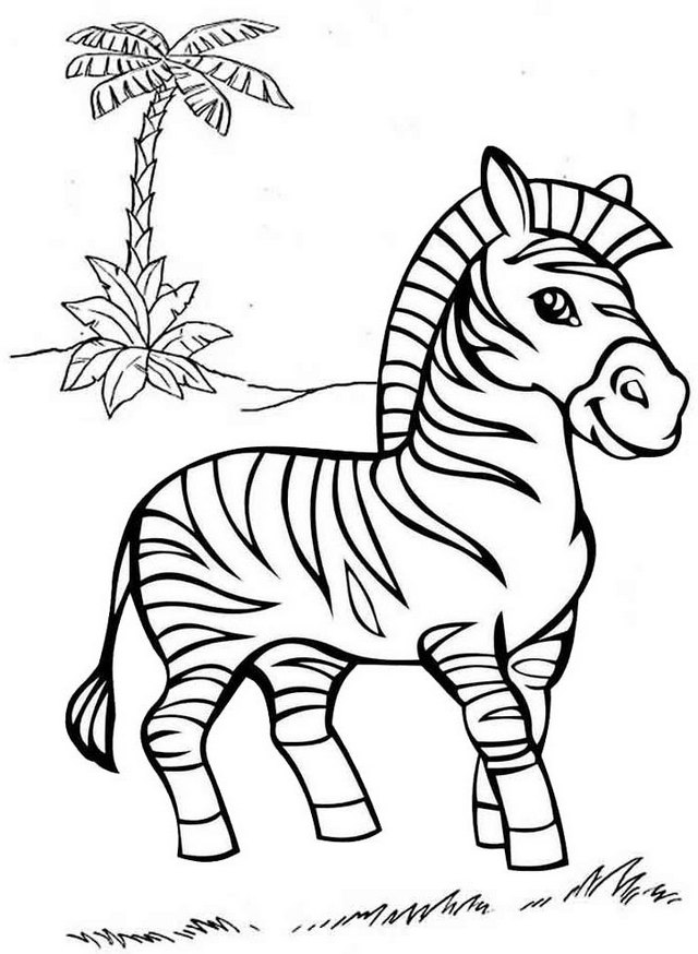 best zebra coloring pages for kids