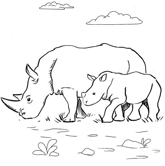 rhinoceros and baby coloring page