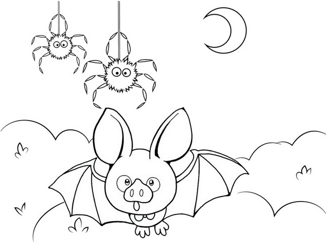 cute bat and spider cartoon coloring page