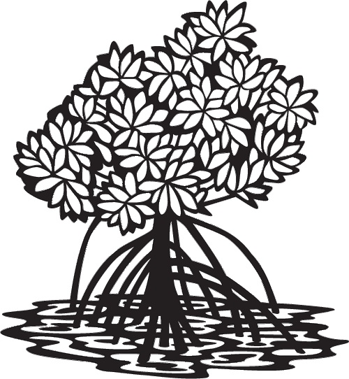 mangrove clipart for textbook