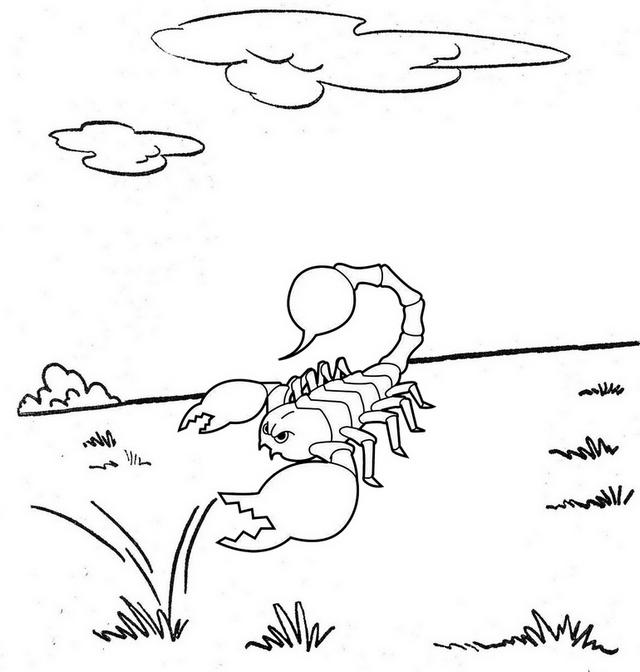 scropion desert coloring page