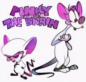Pinky and the Brain Coloring Work from Arie