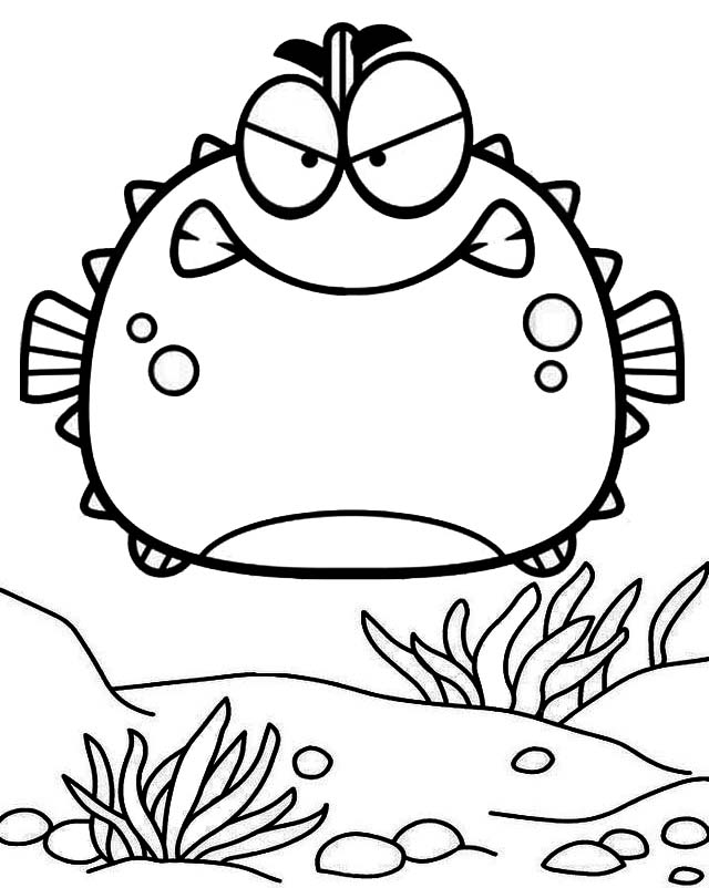 Angry porcupine puffer fish cartoon coloring page