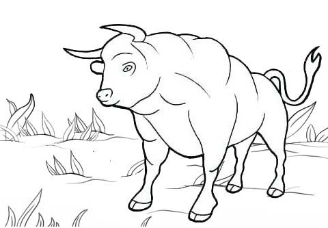 Greater Bull Coloring Page for Kids