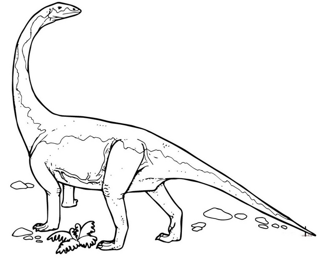 Interesting diplodocus coloring page