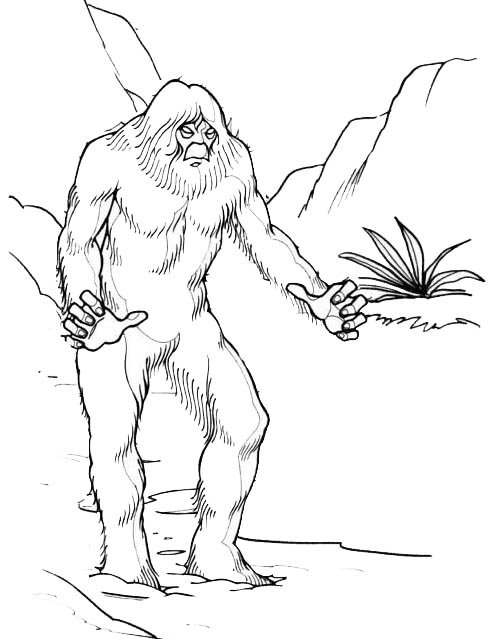 Yeti Star Wars Coloring Page