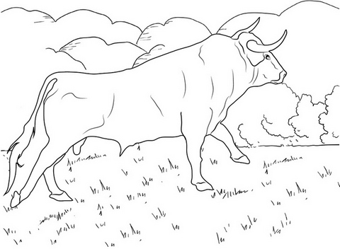 best bull going up coloring page