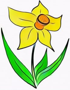 Daffodils coloring work result from a girl student
