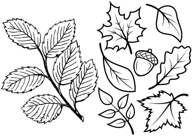 Leaves Flower Coloring Page